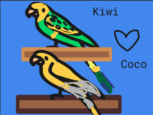 Kiwi & Coco